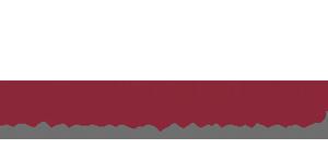 wirthensohn-logo-home